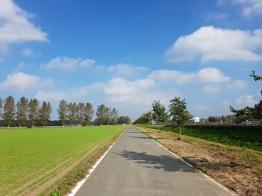 Path close to Zelzate